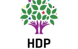 hdp-jpg